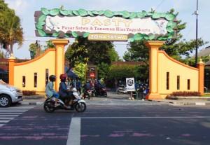 Pasar-Satwa dan-Tanaman-hias-Yogyakarta -PASTY
