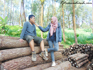 pra_wedding_outdoor_hutan